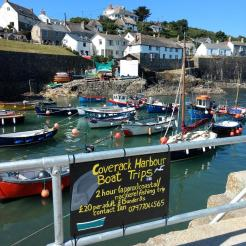 Coverack Harbour Boat Trips