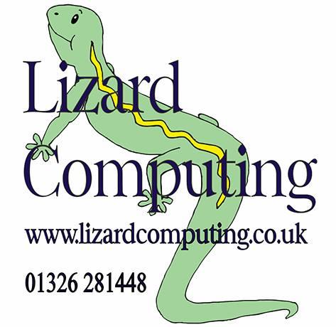 lizard computing